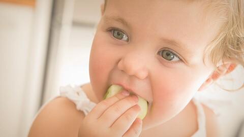 Alimentación del niño de 18 a 21 meses
