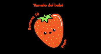 Tamaño del bebé Fresa
