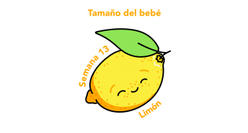 Tamaño del bebé Limón