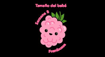 Tamaño del bebé Frambuesa
