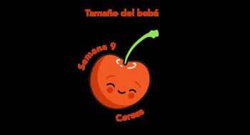Tamaño del bebé Cereza