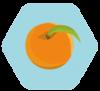 Naranja en gajos